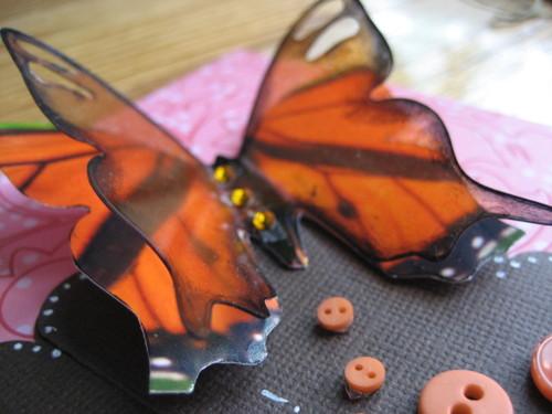 ghost butterfly  pretty
